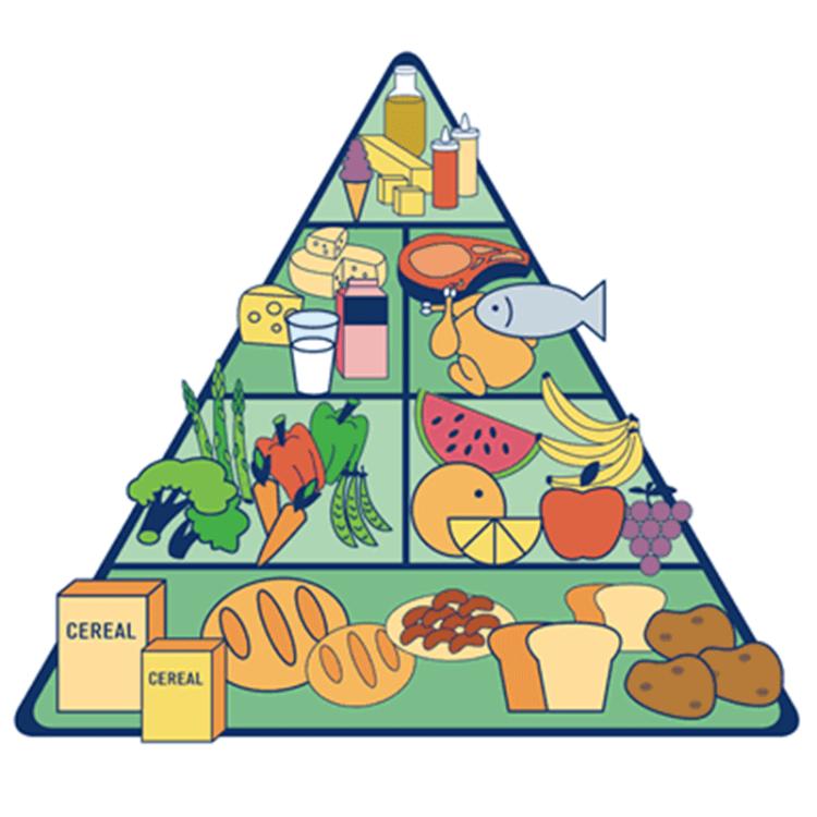 controla-tu-peso-piramide-alimenticia